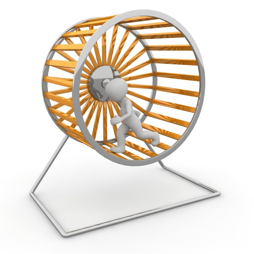 Hamster Wheel Impeller Job District  - Peggy_Marco / Pixabay